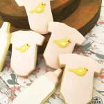 Birds, Bottles, Baby Shower, Made In Melbourne, Cookies made to order, decorated cookies, favours as cookies, Vintage Chic